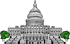 Congressional Term Limits: The Logical Choice