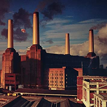 Album Review: Animals-Pink Floyd (1977)